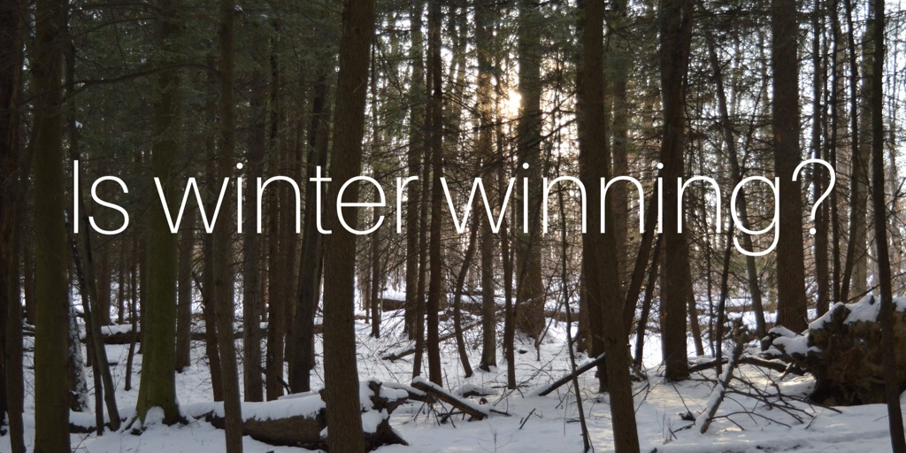 Are you struggling to get outside this winter? I am!
