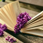 絵本の読み聞かせは一日何冊?ルールや方法は?一冊をとにかく楽しむ!