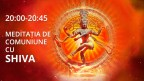 medi-Shiva