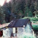 image shamelessly stolen from http://juneauempire.com/neighbors/2013-02-24/accumulated-fragments-bear-man-admiralty-island-part-3