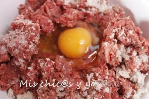 Carne picada hamburguesa