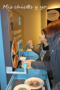 Museu ciencia Terrasa