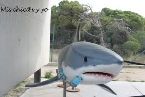 Reproducción de tiburón blanco