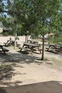 Pícnic en el Delta del Llobregat