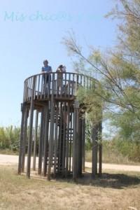 Torre de Cal Malet, Delta del Llobregat