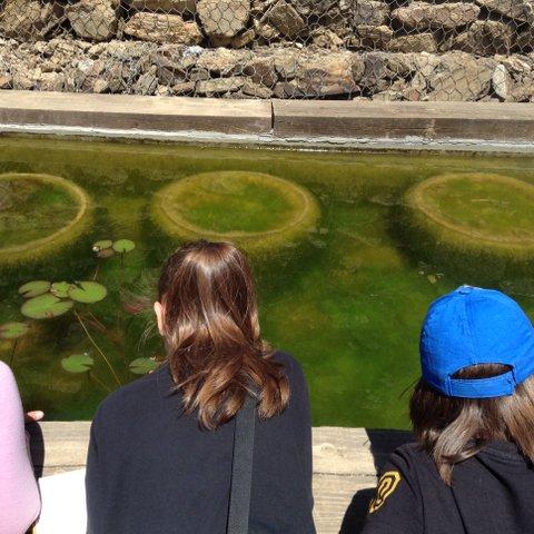 actividades museu ciencies naturals barcelona
