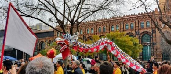 Serpiente roja china