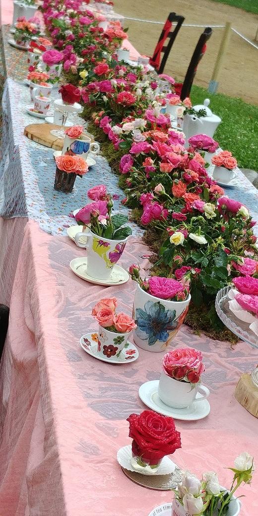 Exposición nacional rosas Sant Feliu