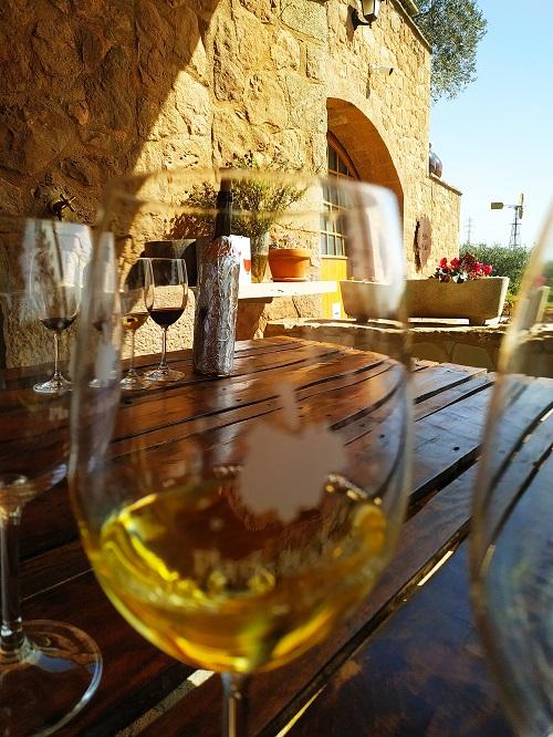 Cata de vinos, Collbaix
