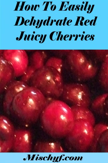 dehydrated cherries Pin