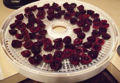 dehydrating cherries
