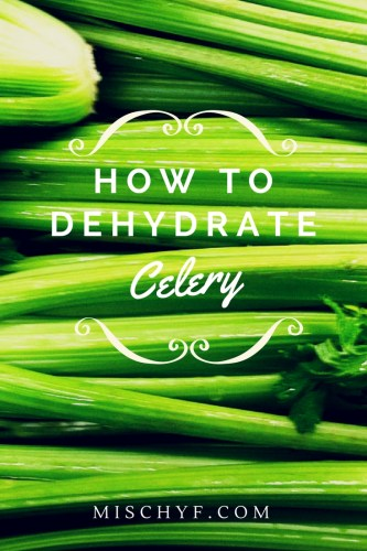 How to Dehydrate Celery by mischyf.com