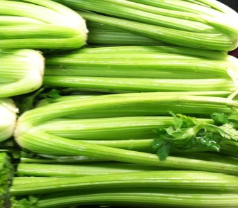Celery Stalks in the grocery isle