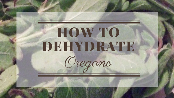 How To Dehydrate Oregano