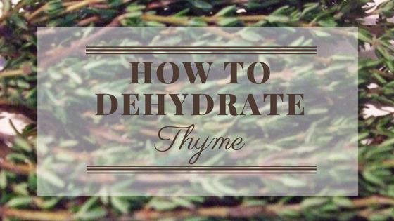 How To Dehydrate Thyme