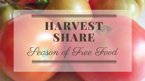 Harvest Share Season Is Almost Here
