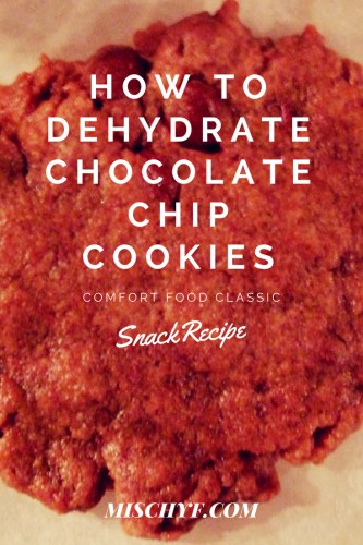 Dehydrated Chocolate Chip Cookies