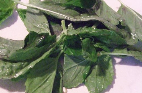 dehydrate basil - rinsed and allow to drain excess water out