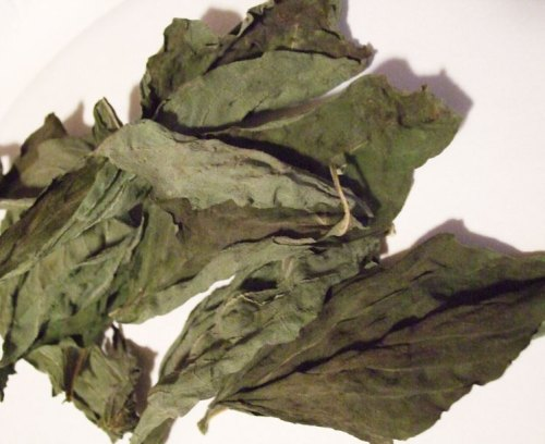 dehydrate basil - dried leaves should be brittle and easily crumble in your hand