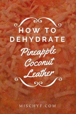 Pineapple coconut leather. Make this yummy leather by dehydrating pineapple and coconut. mischyf.com #tropical #pineapple #coconut #recipe #dehydrate #Leather #FruitRollUp #Fruit #snack #Healthy