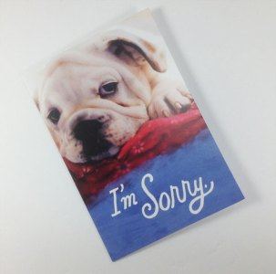 Cute Dog Face. Card Front: I'm Sorry. Card Inside: Please forgive me.