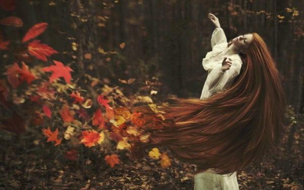remolino de hojas