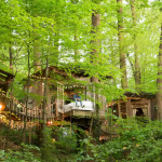 5 Spectacular Treehouses You Can Actually Rent Miss Domesticated