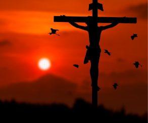 Festa da Exaltação da Santa Cruz e sua importância para a Aliança