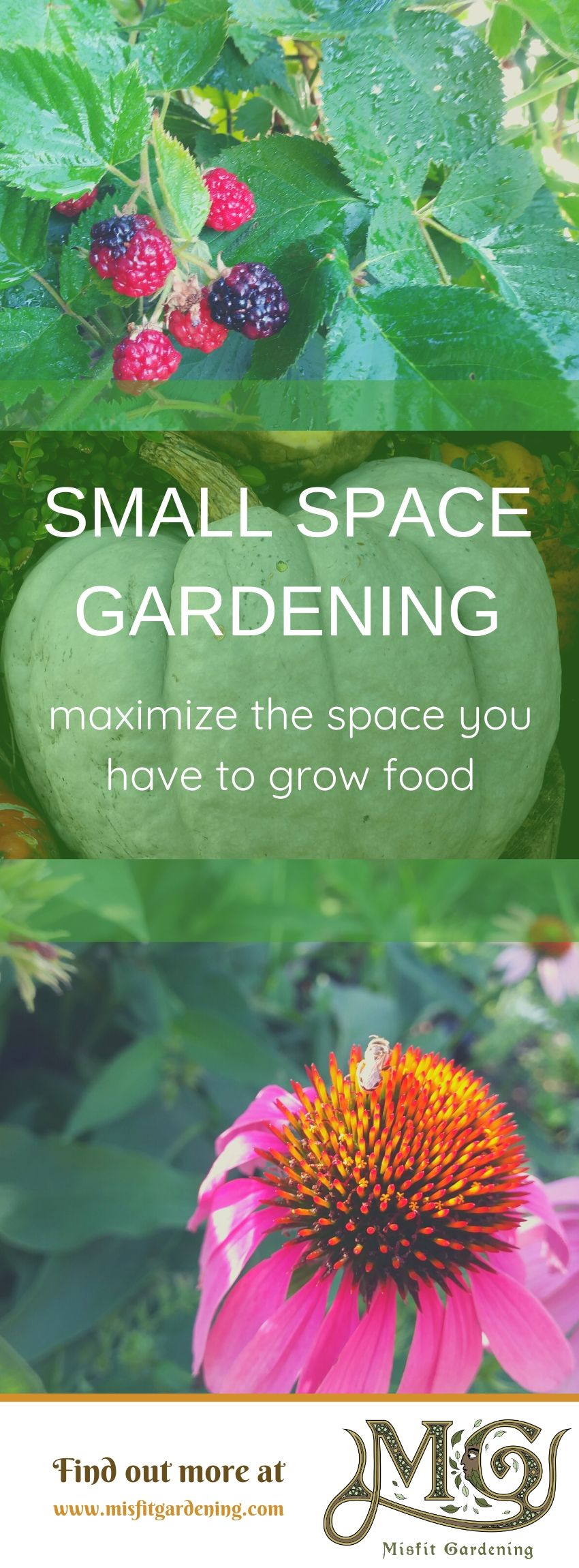 Small Space Gardening Misfit Gardening,Home Office Furniture Arrangement Ideas