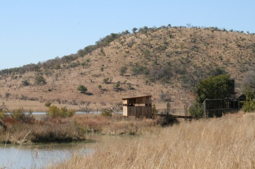 Pilanesberg_bird_hide-001