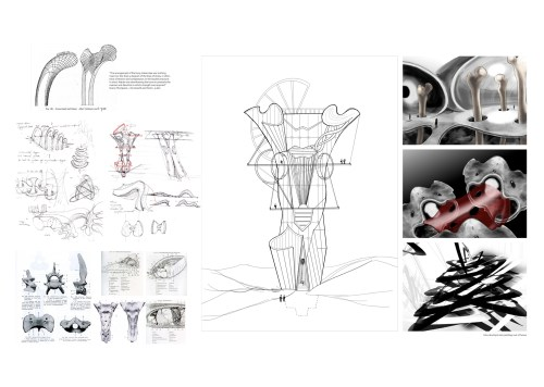 heon-park-1-idea-development-drawing-out-of-bones
