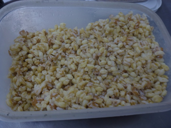 bondiola-risotto-DOC-vinos-cocina_0009