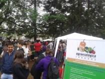 Feria-Agroecologica_0006