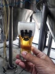 Visita a la cervecería Peñón del Águila
