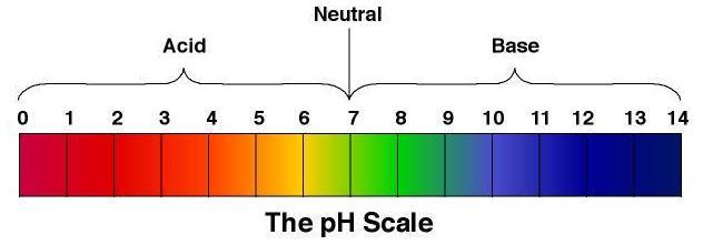 pH Scale - Misha Almira
