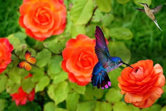 Full Moon Ceremony - Calling in Sewa Kinte Sweet Hummingbird - Joy- Misha Almira