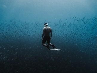 indigos paradise - Deep Sea