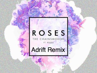 The Chainsmokers Ft. ROZES - Roses (Adrift Remix)