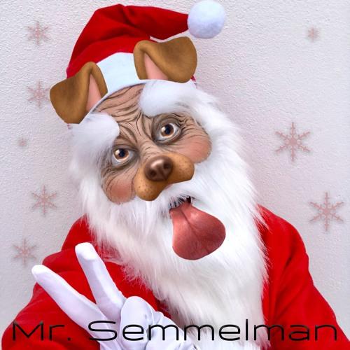 Mr. Semmelman - One Million Colored Lights [EDM]