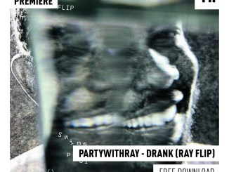Partywithray - Drank (Ray Flip) [House Music]