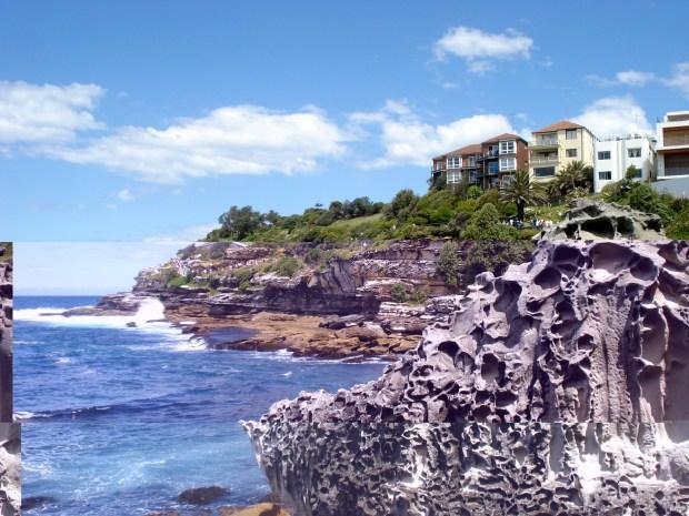 Bondi-Coogee cliffside walk during stuvac