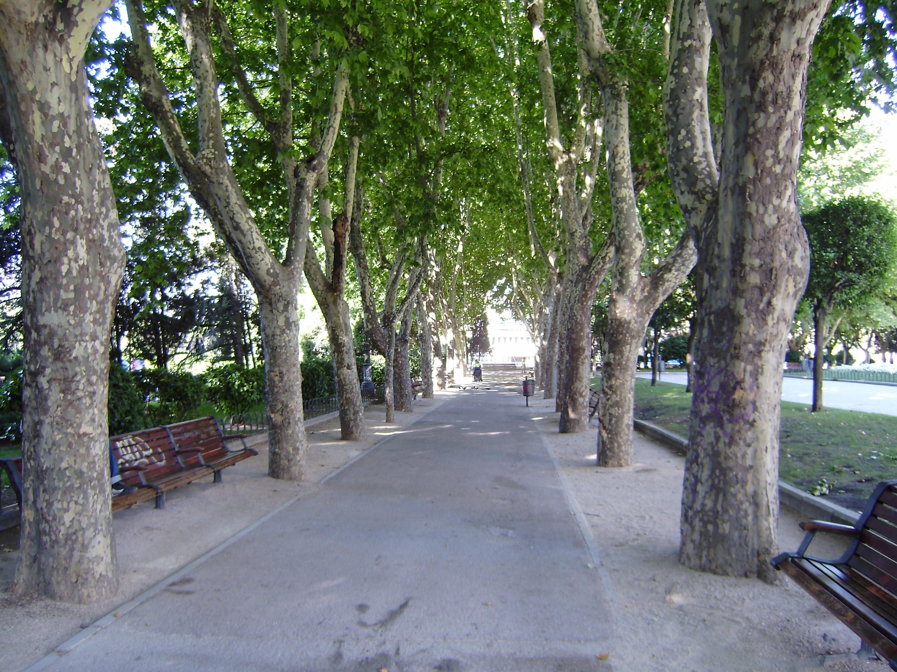 caminobreve en Plaza de España