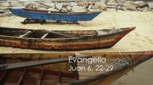 Juan 6, 22-29