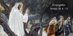 Mateo-28,8-15