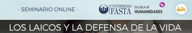 los-laicos-y-la-defensa-de-la-vida-banner