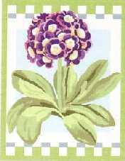 AURICULA: Panamá ó cañamazo con dibujo impreso de flor prímula aurícula, para bordar a punto de cruz o petit point