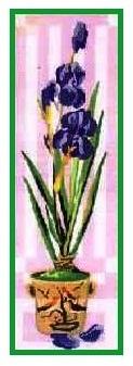 IRIS-2: Panamá con dibujo impreso de flor Iris (lirio), para bordar a punto de cruz