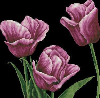 TULIP-2: bordado a punto de cruz de tulipanes púrpura