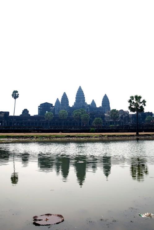 Angkor Wat (7)