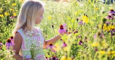 Alergia Infantil